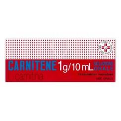 CARNITENE*orale soluz 10 flaconcini 1 g/10 ml